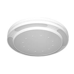 LN-8596-春LED-双色现代灯
