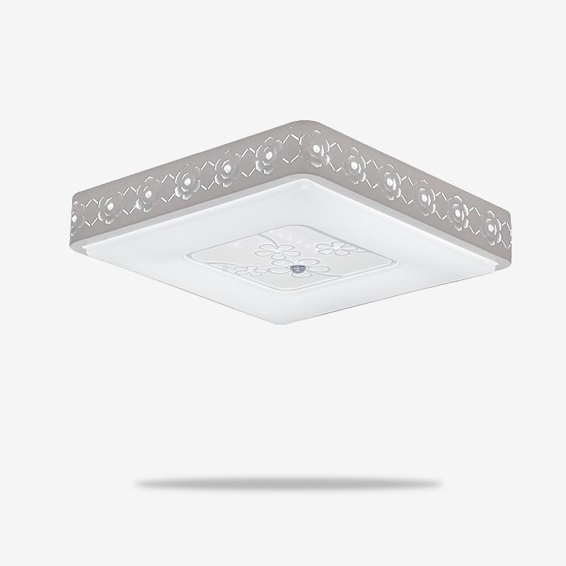 LN-8625-春LED-双色-现代灯