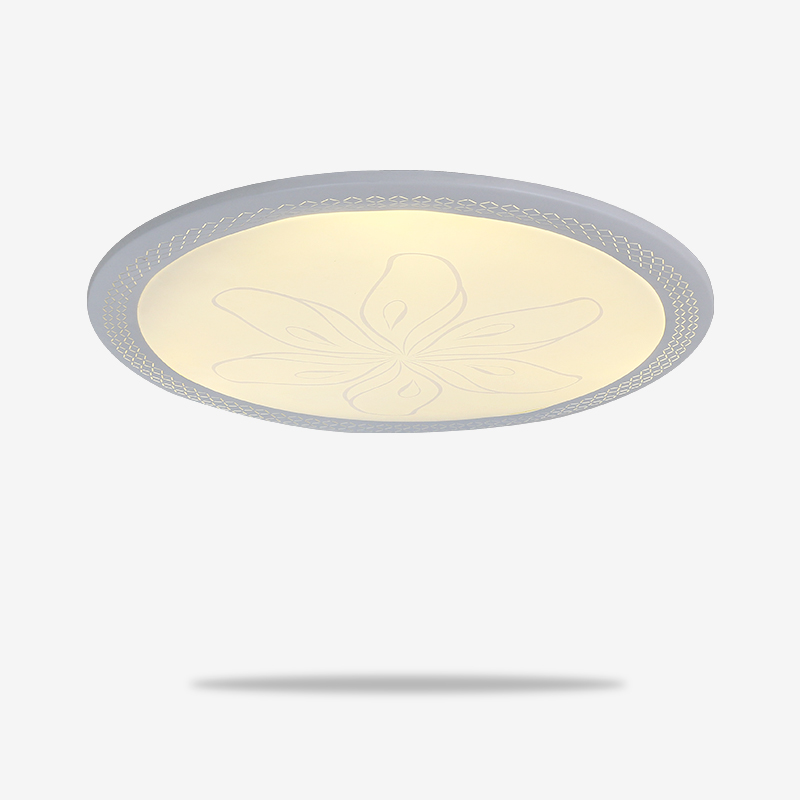 LN-8630-春LED-双色-现代灯