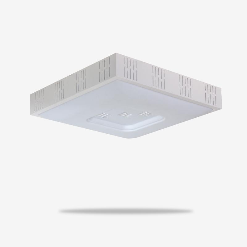 LN-8639-春LED-双色-现代灯