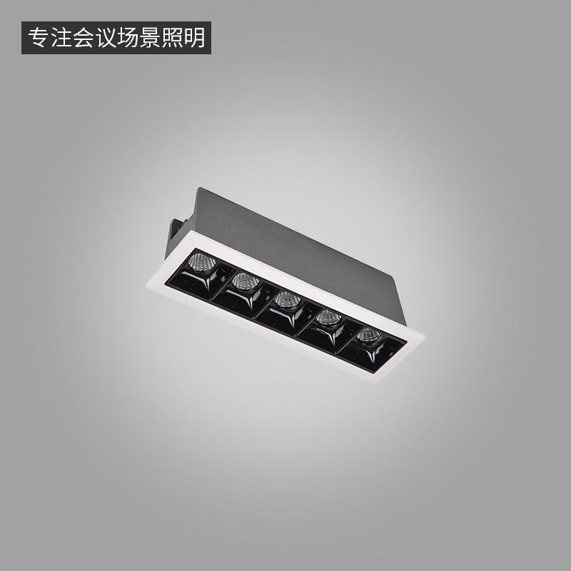 LN-Q系列格栅点光源-嵌入式条形灯-5头